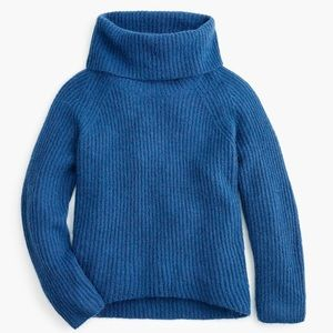 Point Sur Mohair Ribbed Chunky Turtleneck Sweater